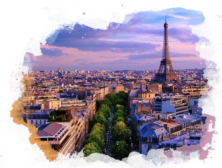L'Orchidée Sauvage Parijs