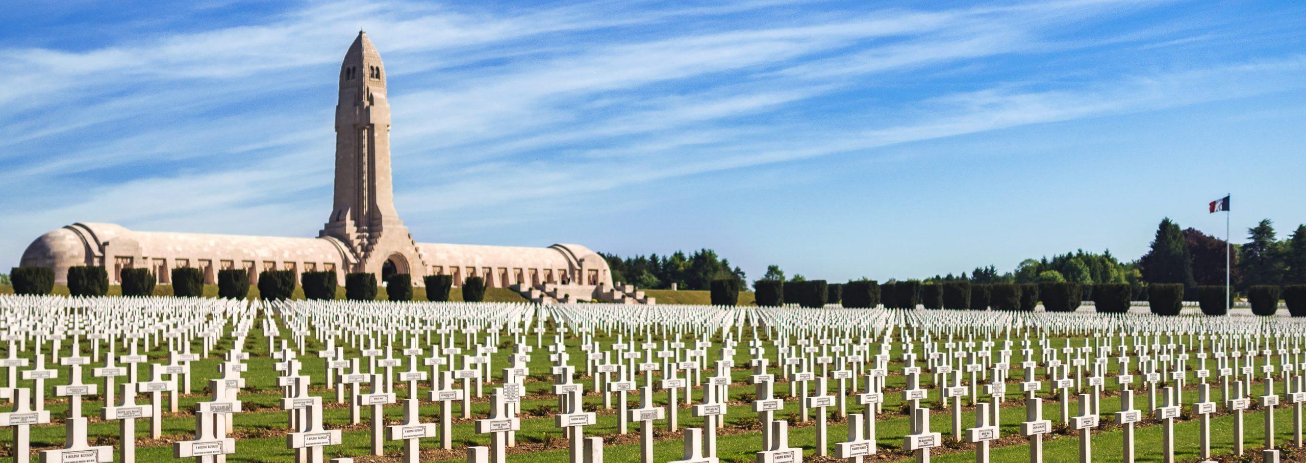 L´Orchidée Sauvage Champ de Bateille Verdun