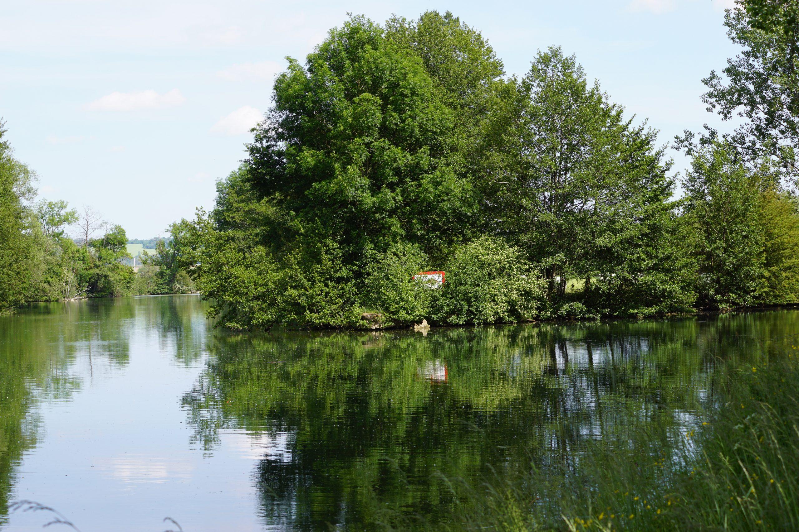 L´Orchidée Sauvage de Meuse